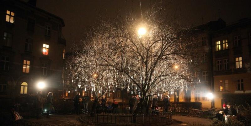 Tree adorned for Hanukkah celebrations