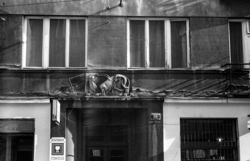 fragment elewacji, okno czterokwaterowe , z prawej drzwi, u góry płaskorzeźba jaszczura