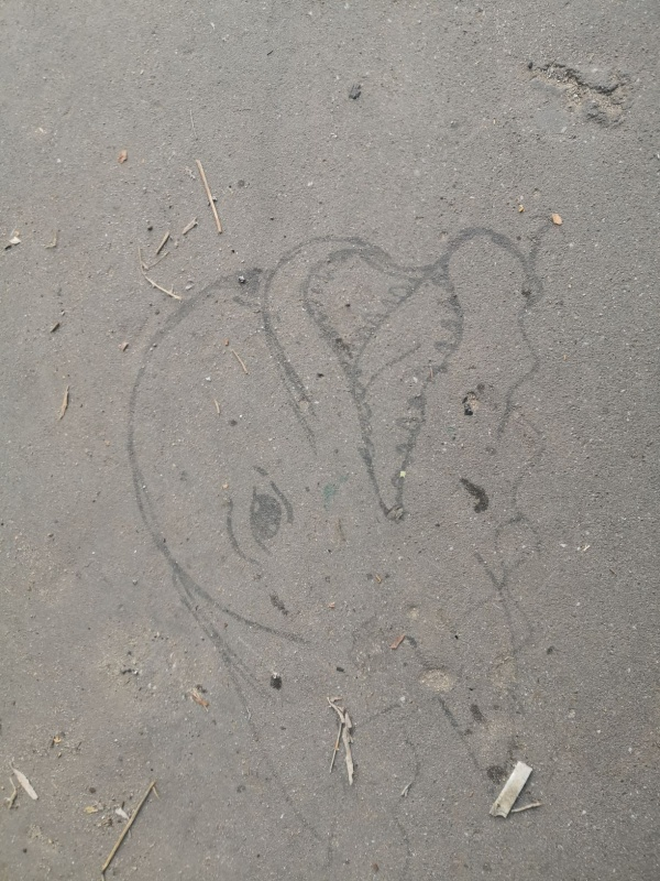 Street art on the sidewalk by the Inflancki Boulevard